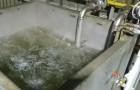 Boiled Water Feed – Parker Metal
